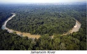 siege amazon amazon rainforest siege by michel temur corrupt installed