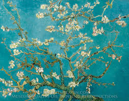 vincent gogh blossoming almond tree gogh almond blossom
