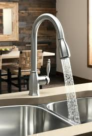 Kitchen Faucets Canadian Tire Hansgrohe Kitchen Faucet Costco Home Design Ideas And Pictures