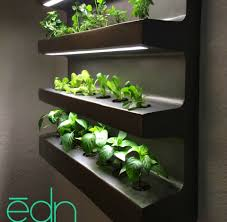 indoor herbs to grow wall hanging edn grows number of different vegetables and herbs