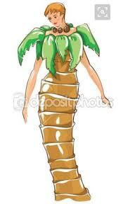 shanti coconut tree mrs root u0027s music room
