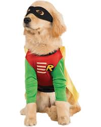 cute dog halloween costumes the five most popular pet costumes for 2015 wdef