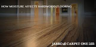 how moisture affects hardwood flooring jabro carpet one floor
