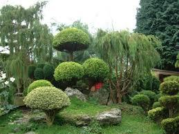 gardens houses a small cubtab garden design with backyard