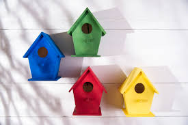 bird house design competition a competition for schools local