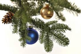 Christmas Decorations With Pine Tree Branches by Christmas Decoration With Pine Branches Red Glass Ball And Pine