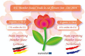s day flowers where do your s day flowers come from product eurostat