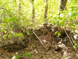 New Hampshire vegetaion images Birch beech maple monadnock mountain monadnock vegetation sugar jpg