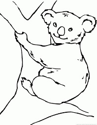 koala coloring pages 2 coloring