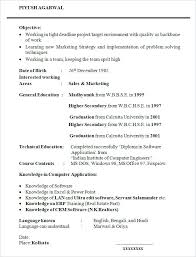 english resume sample eliolera com