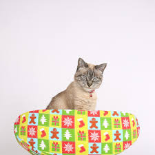 cat canoe in christmas fabric the cat ball