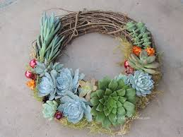 succulent wreath succulents