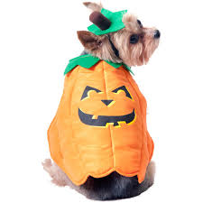 Lion Halloween Costumes Dogs Pumpkin Dog Halloween Costume Walmart Halloween