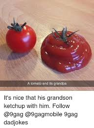 Tomato Meme - a tomato and its grandpa it s nice that his grandson ketchup with