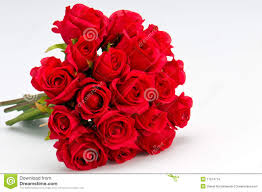 bouquet of roses bouquet of roses stock images image 17514774