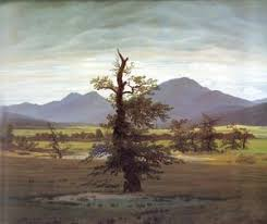 caspar david friedrich the complete works the tree of crows c