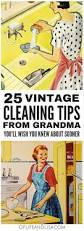 Housekeeping Tips 861 Best Cleaning Tips Images On Pinterest Cleaning Hacks Deep