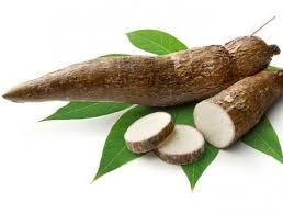 cuisiner manioc comment cuisiner le manioc toutcomment