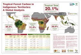 terms u0026 conditions planet alpha corp forest carbon legacy
