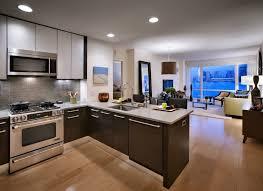 Open Seating Living Room Astounding Extra Small Living Room Ideas Setups Grey Sofas Rug