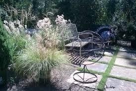 plant ornamental grass in your fall garden
