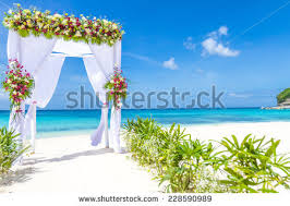 wedding arches coast wedding arch decorated flowers on stock photo 128226089