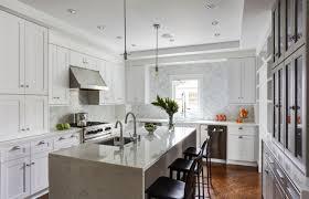 custom kitchen cabinets markham transitional kitchen cabinets in toronto markham castle