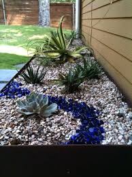 Succulent Rock Garden How To Start A Rock Garden Where To Start With The Succulent