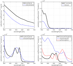 on the noninvasive optical monitoring and differentiation of