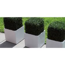Large White Planter by Capi Lux Square Planter White White Commercial Planters