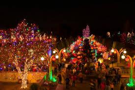 Denver Botanic Gardens Denver Co Blossoms Of Light One Million Lights Illuminating The Denver
