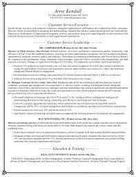 Director Of Development Resume Resume Samples For Customer Service Resume Badak
