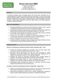 curriculum vitae writing format