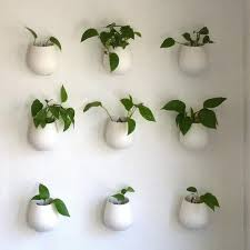 indoor wall planters gardening with hanging and wall mounted