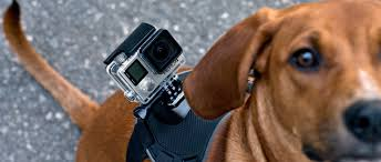 gopro hero 4 black friday gopro hero4 black edition camcorder review reviewed com camcorders