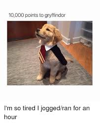 I M So Tired Meme - 10000 points to gryffindor i m so tired i jogged ran for an hour