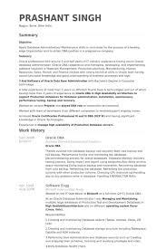 Merchandiser Resume Sample by Neoteric Design Inspiration Dba Resume 15 Guerrilla Resume