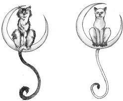 537 best mooncat images on cats black cats and