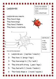 60 free esl insects worksheets