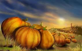 autumn pumpkin wallpaper widescreen pumpkin field walldevil