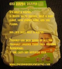 Cloth Diaper Meme - are limited edition cloth diapers good for the cloth diaper industry