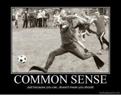 Because I Can Meme - common sense just because you can doesn t mean you should dank