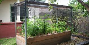 Kitchen Garden Designs Garden Design Garden Design With Compact Vegetable Garden Design