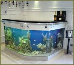 Aquarium Decor Ideas 32 Best Aquariums Images On Pinterest Aquarium Ideas Saltwater