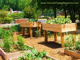 How To Make A Raised Bed Vegetable Garden - above ground vegetable planters round designs