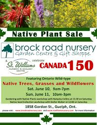 the native plant centre brock road nursery brockrdnursery twitter