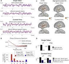 Cherry Cocktail Party Effect - mechanisms underlying selective neuronal tracking of attended
