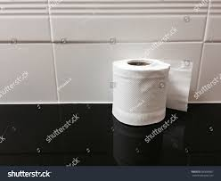 toilet paper shelf toilet paper on shelf stock photo 560068567 shutterstock