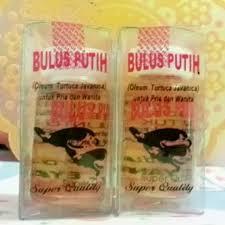 Minyak Bulus Asli Papua jual produk kosmetik bersih kinclong jual minyak bulus papua