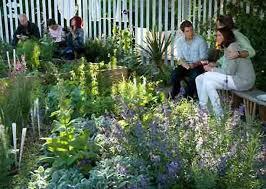 Houston Urban Gardeners - 62 best pop up gardening images on pinterest pop up landscaping